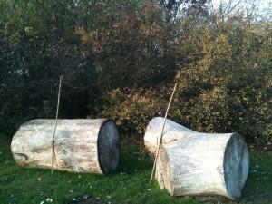 staffs and stumps